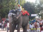 Allahabad nagar kirtan 009.jpg