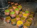 ISKCON Bhubaneshwar 18.jpg