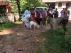 ISKCON Mangalore 147.jpg