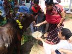 ISKCON Mangalore 148.jpg