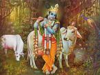 Krishna art 004.jpg