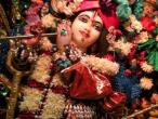 Surat, Gopastami celebration  01.jpg