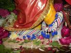 Surat, Gopastami celebration  05.jpg