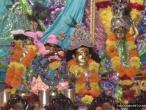 Surat, Gopastami celebration  11.jpg