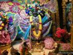 Surat, Gopastami celebration  19.jpg