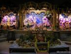 Surat, Govardhana celebration  15.jpg