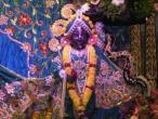 Surat, Govardhana celebration  18.jpg