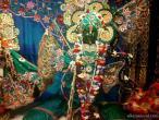 Surat Radhastami celebration  04.jpg