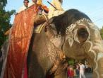 ISKCON Ujjain 53.jpg