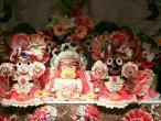 Radharani festival 002.jpg