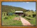 New Gokula farm 018.jpg