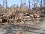 ISKCON Carriere, New Talavana, Katrina 005.jpg