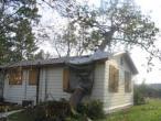 ISKCON Carriere, New Talavana, Katrina 021.jpg