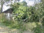 ISKCON Carriere, New Talavana, Katrina 023.jpg
