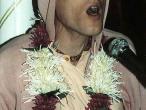Bhakti Vikas Swami 13.jpg