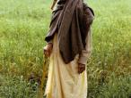 Srila Prabhupada a 012.jpg