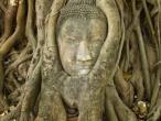 Buddha statues 009.jpg