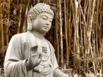 Buddha statues 038.jpg
