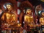 Buddha statues 053.jpg