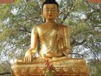 Buddha statues 061.jpg