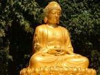 Buddha statues 062.jpg