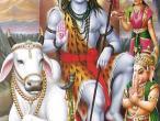 Shiva 116.jpg