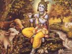 Krishna 12.jpg