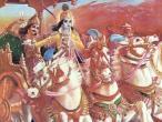 Krishna 124.jpg