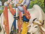Krishna 19.jpg