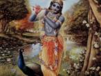 Krishna 253.jpg