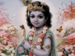 Krishna 263.jpg