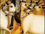 Krishna 50.jpg