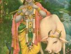 Krishna 7.jpg
