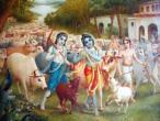 Krishna a053.jpg