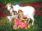 Radha Krishna 84.jpg