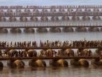 Ganga river 12.jpg