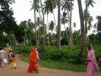 Jaganatha Vallabha garden 04.jpg