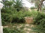 Jaganatha Vallabha garden 06.jpg
