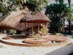 Gurukula garden 1.jpg