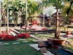Gurukula garden 6.jpg
