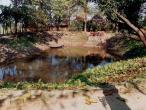 Gurukula garden pool.jpg