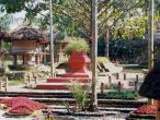 Gurukula garden tulasi shrine.jpg