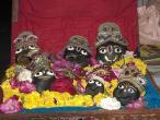 Mayapur 2006 001.jpg