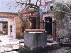 Sanatana-well-bk.jpg