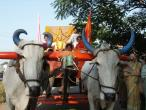 Padayatra in South India 016.JPG
