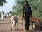 Padayatra in South India 030.JPG