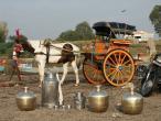 Padayatra in South India 206.JPG