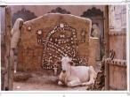 India postcard 14.JPG