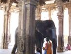 South India temples 091.JPG