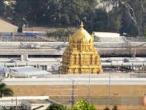 Tirupati - Venkateswara Temple 17.jpg